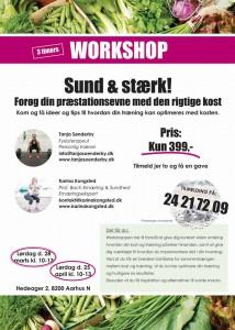 Plakat til workshop